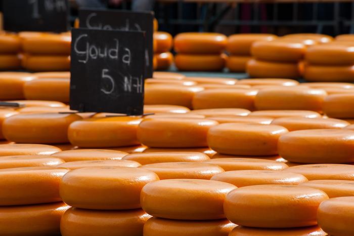 queijos holandeses